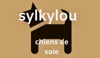 élevage Wheaten  havanais  bichon  terrier  quebec    éleveur  irlandais allergie chiot  vendre